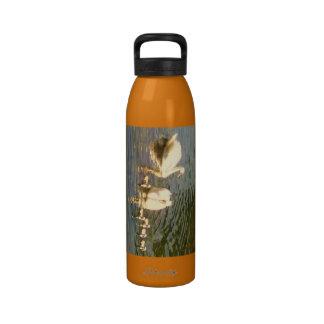 Swan Family Liberty Water Bottle