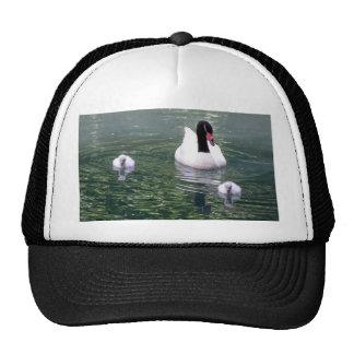 Swan family mesh hat