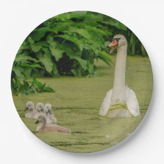 Swan Family Paper Plate