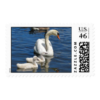 Swan Family stamp