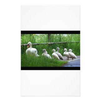 Swan Family Walking Stationery