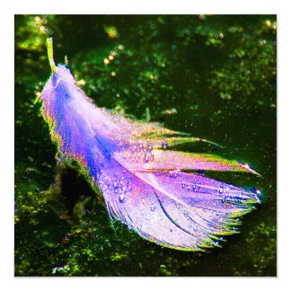 """Swan feather coloured, artificially changes, 5.25"""" square invitation card"""