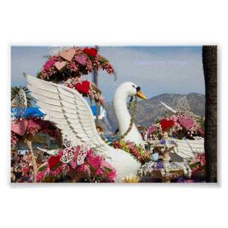 Swan Float , Dominant Images Poster