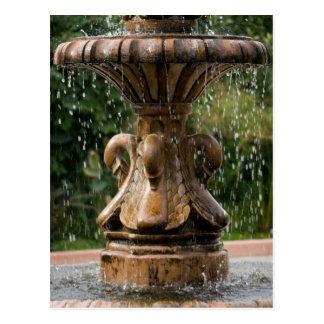 Swan Fountain Postcard