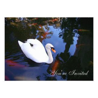 Swan in Coy pond Invite