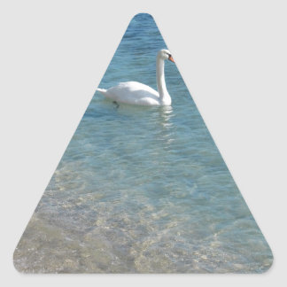 Swan in crystal clear shallow sea water triangle sticker