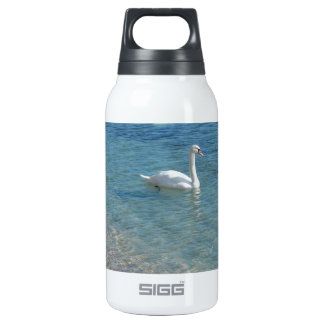 Swan in crystal clear shallow sea water thermos bottle