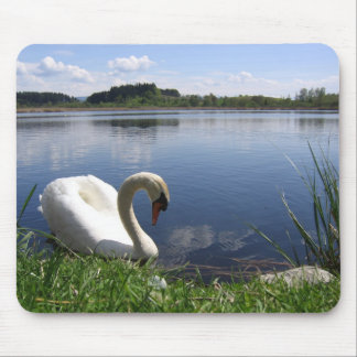 Swan In Lake Mouse Pad
