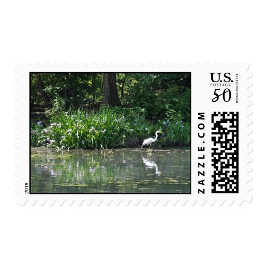 Swan in Lake Postage