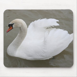 Swan in the lake mouse pad