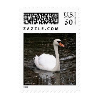 Swan in Versailles Postage Stamp