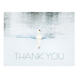 Swan in Water Minimalist Thank You Postcard