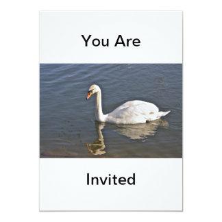 Swan Invitation Invite