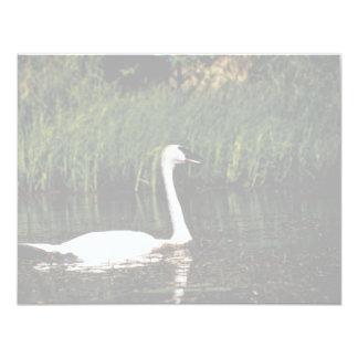 Swan Personalized Invites