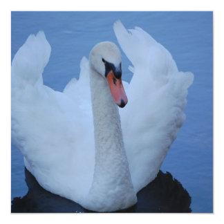 Swan Invitations