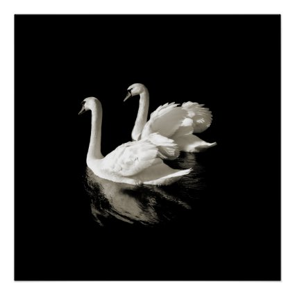 Swan Lake - Black and White poster