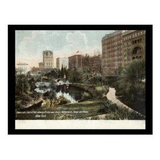 Swan Lake, Central Park, New York City 1909 Vintag Postcard