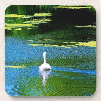 Swan Lake Coaster