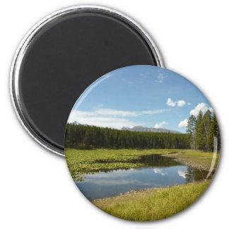 Swan Lake I at Grand Teton National Park Magnet