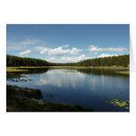 Swan Lake II at Grand Teton National Park Card
