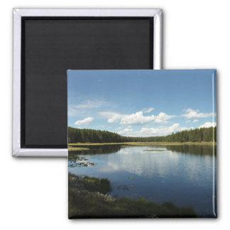 Swan Lake II at Grand Teton National Park Magnet