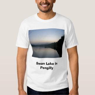 Swan Lake in Pengilly Tee Shirt