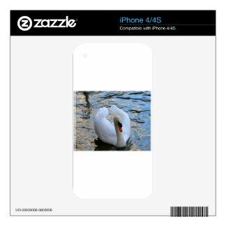Swan Lake iPhone 4 Skins