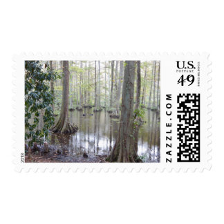 Swan Lake Iris Garden Postage