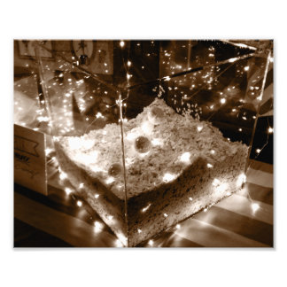Swan Lake Light Display Photo Print