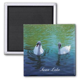 Swan Lake - magnet