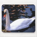 Swan Lake Mouse Pads