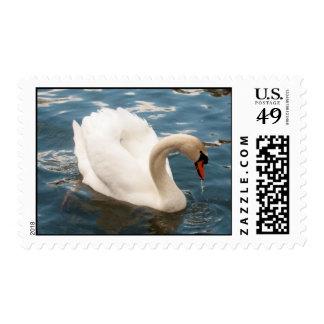 Swan Lake Postage Stamp