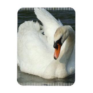 Swan Lake  Premium Magnet Flexible Magnet