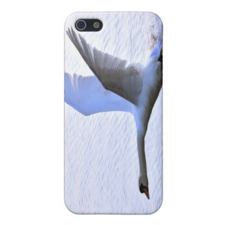 Swan landing on Lake Cover For iPhone SE/5/5s