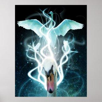 Swan Light print