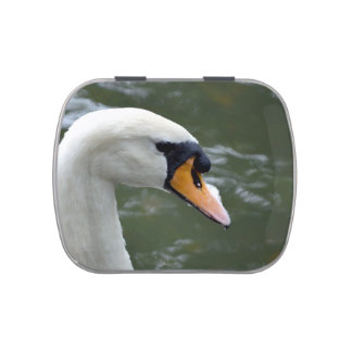 Swan looking right head view bird image jelly belly candy tin