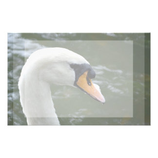 Swan looking right head view bird image stationery