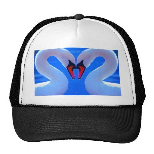Swan Love, Romantic Heart Shaped Necks Mesh Hats