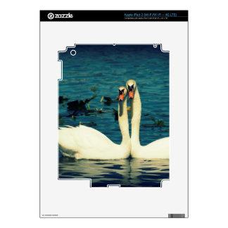 Swan Love iPad 3 Skin