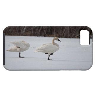 Swan Magicians iPhone SE/5/5s Case