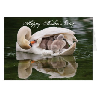 Swan Mother and Babies Mother's Day Card