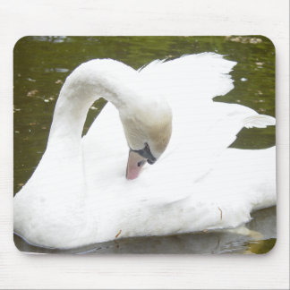 Swan of the Lake Mouse Pad