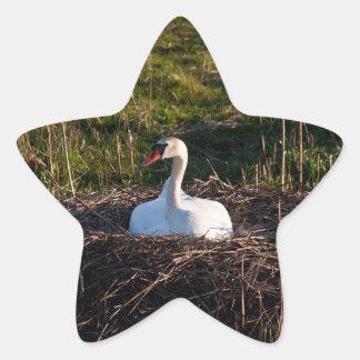 Swan on nest star sticker