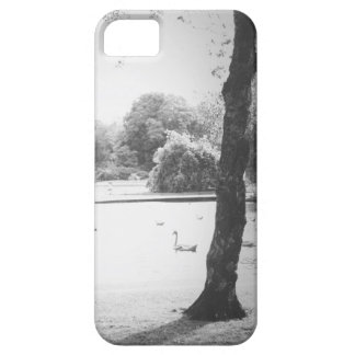 Swan on the lake iPhone 5 case
