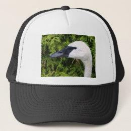 swan pencil art trucker hat