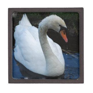 Swan Perfection Box Premium Gift Box