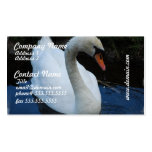 Swan Perfection Business Cards