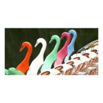 Swan Photo Card