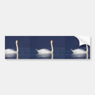 Swan portrait bumper sticker