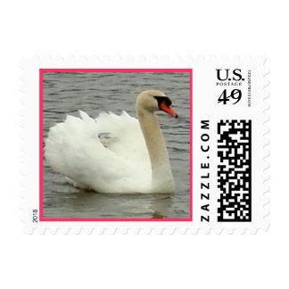swan postage